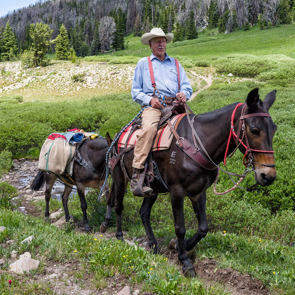 Two cowboys on horses with a packhorse