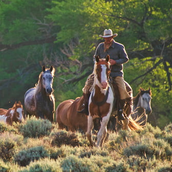 Dude and Guest Ranches. Photo: Gary Kunis