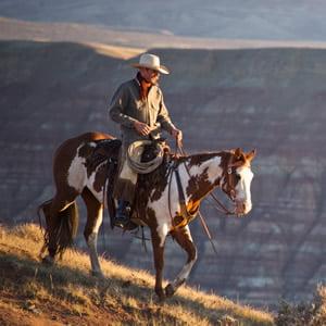 Cowboy Life. Photo: Gary Kunis