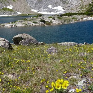 My 6 Favorite Wind River Country Hikes