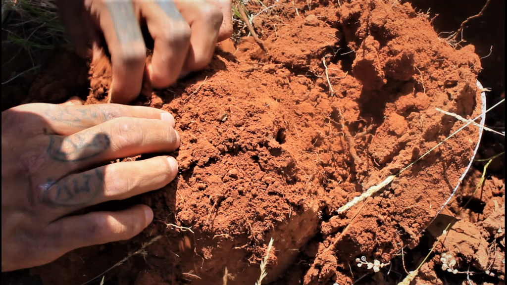 Handing digging into soil to find medicine and food